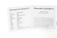 150g Panda 2019 mit Zettel in der FOLIE inkl. BOX