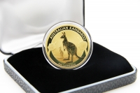 1 oz Känguru Gold Div. AUSTRALIEN